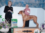 Best Bred By and a Reserve under judge Loraine Boutwell