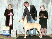 Asia Wins 1st Place in 9-11 at National Specialty