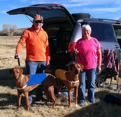 Annie takes BOB for a 5 point major!     Annie in blue and Pepper (1st place in Specials) is in yellow.      Annie and an Ibizan Hound tied for BIF and Annie lost in the runoff but she had a great day.     This was a February 2014 trial.