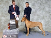 Jasper's BOB and Group 4 picture from October 2013 at the Lower Mainland show in Canada